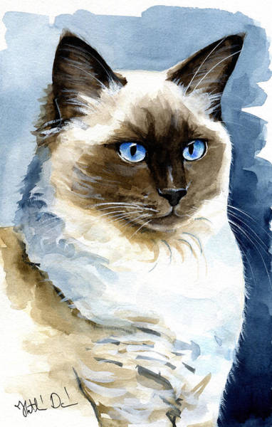 Roxy - Ragdoll Cat Portrait Art Print