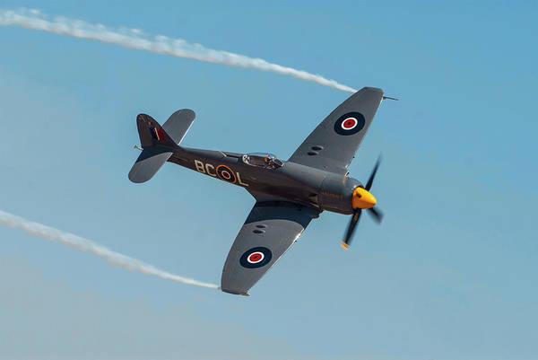 Hawker Sea Fury Photograph - Royal Navy Sea Fury F11 by Erik Simonsen