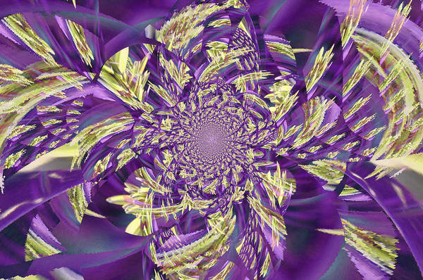 Wall Art - Digital Art - Royal Purple  by Rose  Hill