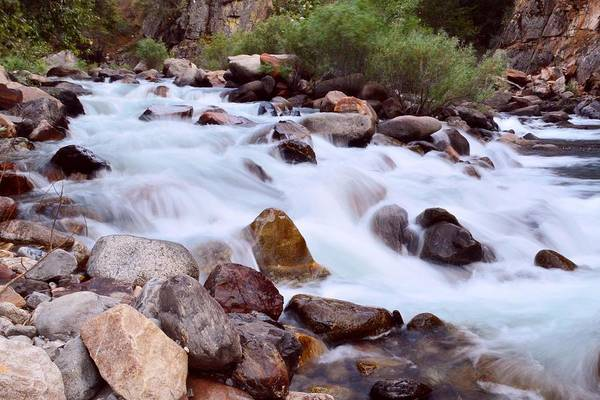Photograph - Royal River - Kings Canyon National Park by KJ Swan