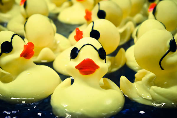Rubber Ducky Photograph - Rubber Duckie by Colleen Kammerer