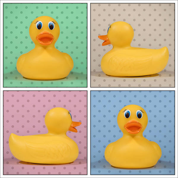 Ducks Photograph - Rubber Ducky by Scott Norris