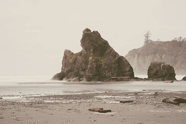 Photograph - Ruby Beach No. 17 by Desmond Manny