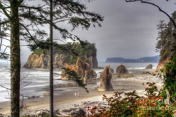 Wall Art - Photograph - Ruby Beach by Rick Mann