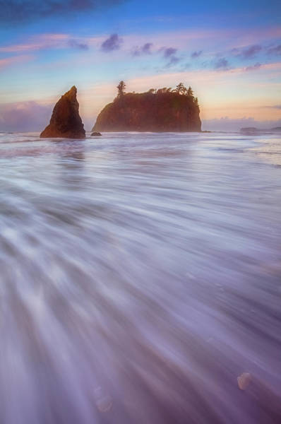 Photograph - Ruby Dreams by Darren White