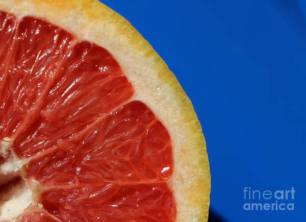 Photograph - Ruby Red Grapefruit Quarter by Karen Adams