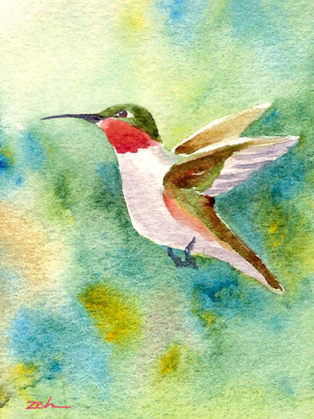Painting - Ruby-throated Hummingbird by Janet Zeh