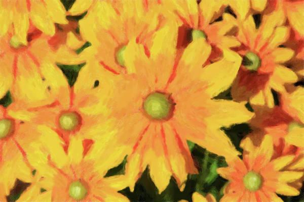 Digital Art - Rudbeckia Oil Painting by Jill Lang
