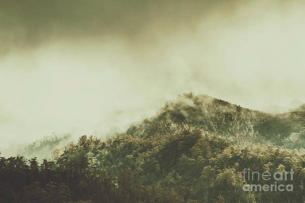 Tree Top Photograph - Rugged Atmosphere by Jorgo Photography - Wall Art Gallery