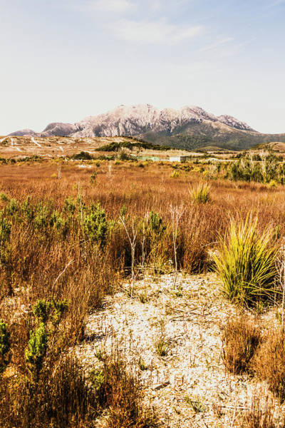 Grassland Photograph - Rugged Australian Bushland by Jorgo Photography - Wall Art Gallery