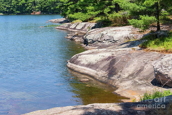 Photograph - Rugged Muskoka Lake Shoreline by Les Palenik