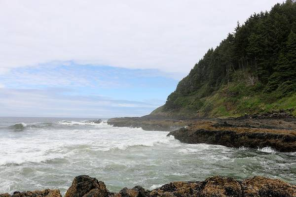 Photograph - Rugged Oregon Coast - 8 by Christy Pooschke