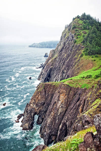 Photograph - Rugged Oregon Coast On A Foggy Day by Lincoln Rogers