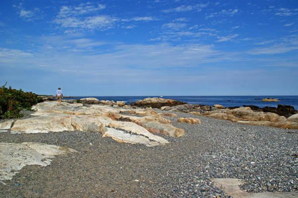 Photograph - Rugged Shoreline by Lynda Lehmann