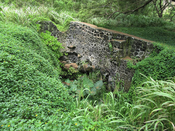 Photograph - Ruins At Hamakua Sugar Cane Landing by Pamela Walton