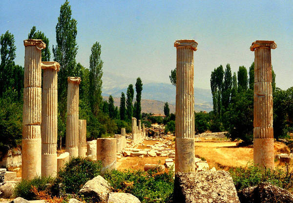 Wall Art - Photograph - Ruins Of  Aphrodisias by Lou Ann Bagnall
