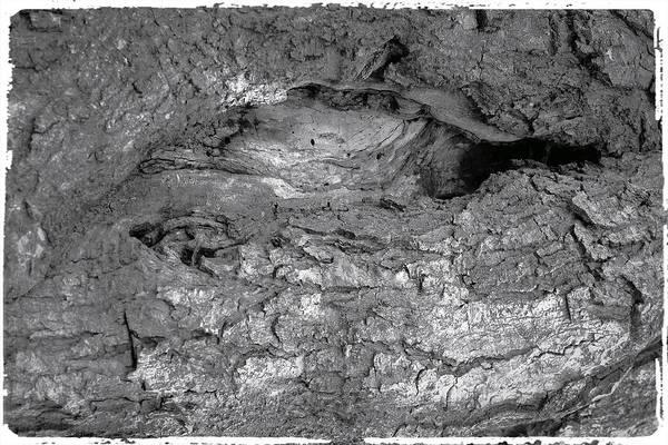 Photograph - Ruins Of Myth by Mario MJ Perron