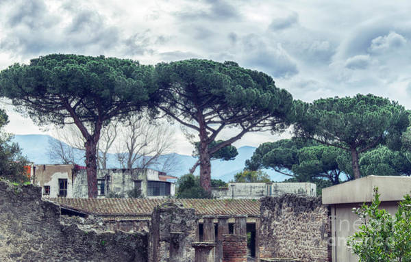 Photograph - ruins of Pompeii town,  Italy by Ariadna De Raadt