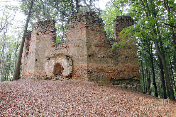 Woodland Wall Art - Photograph - Ruins Of The Baroque Chapel Of Saint Mary Magdalene by Michal Boubin