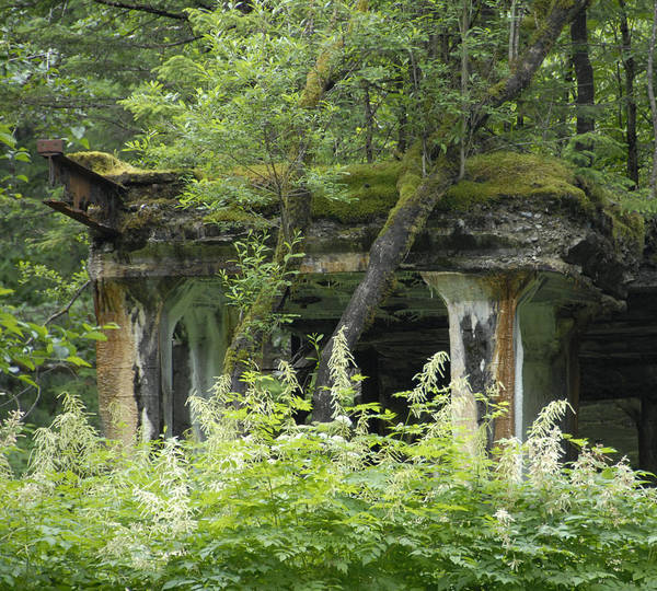 Photograph - Ruins Of Treadwell Mines by Jody Lovejoy