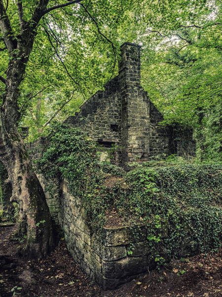 Photograph - Run Down Mill by Nick Bywater