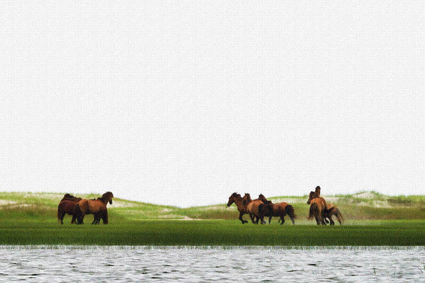Photograph - Running Horses In The Marsh 2 by Dan Friend