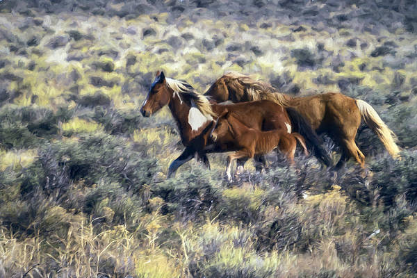 Photograph - Running Together Painterly by Belinda Greb