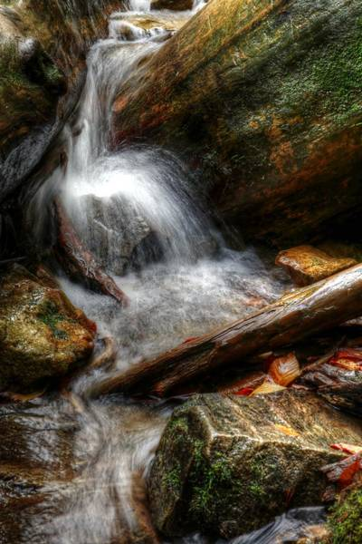 Photograph - Running Waters Of Fall by Carol Montoya