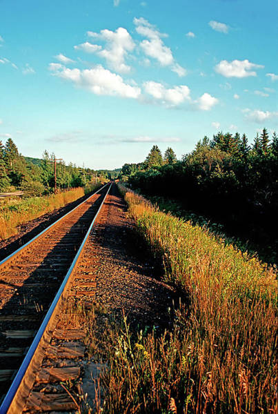 Photograph - Rural Country Side Train Tracks by Peter Pauer