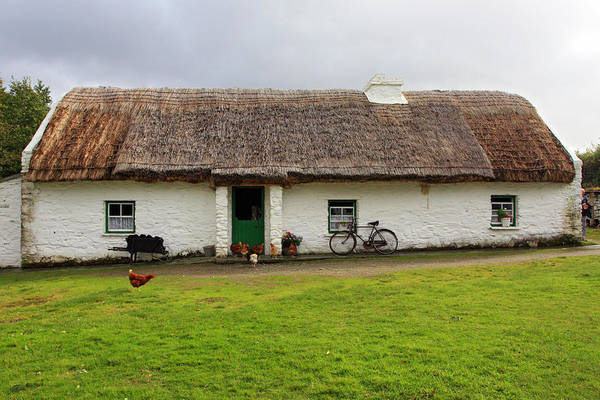 Photograph - Rural Life In Ireland by Pierre Leclerc Photography