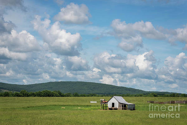 Photograph - Rural Midwest by Andrea Silies