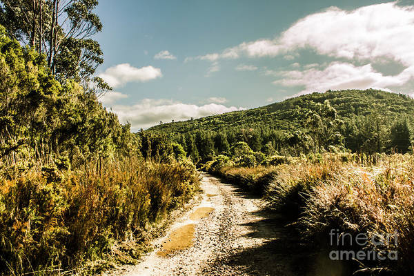 Gravel Road Photograph - Rural Paths Out Yonder by Jorgo Photography - Wall Art Gallery