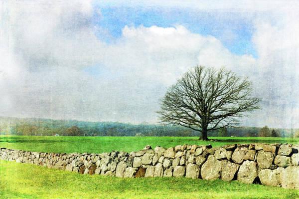 Photograph - Rural Tranquility by Randi Grace Nilsberg