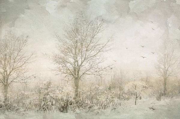 Photograph - Rural Winter Landscape by Julie Palencia
