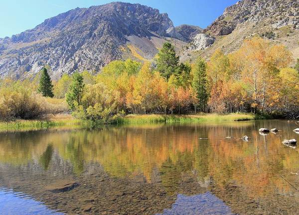 Photograph - Rush Creek Reflection by Sean Sarsfield