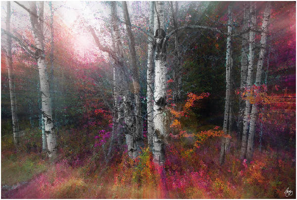 Photograph - Rushing Into The Rainbow Grove by Wayne King