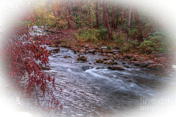 Photograph - Rushing Mountain Stream by Tom Claud