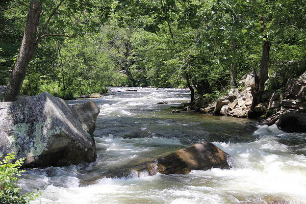 Photograph - Rushing Waters by Allen Nice-Webb