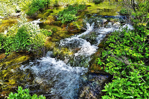 Digital Art - Rushing Waters by Susan Kinney