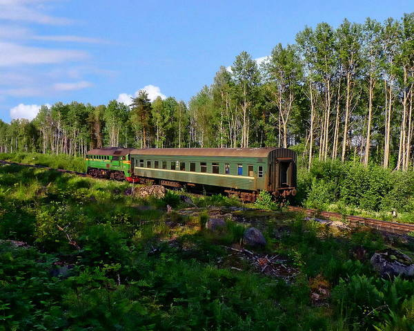 Photograph - Russian Commuter Train by Anthony Dezenzio