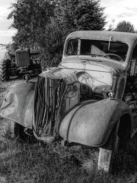 Photograph - Rust Buddies Bw by David King