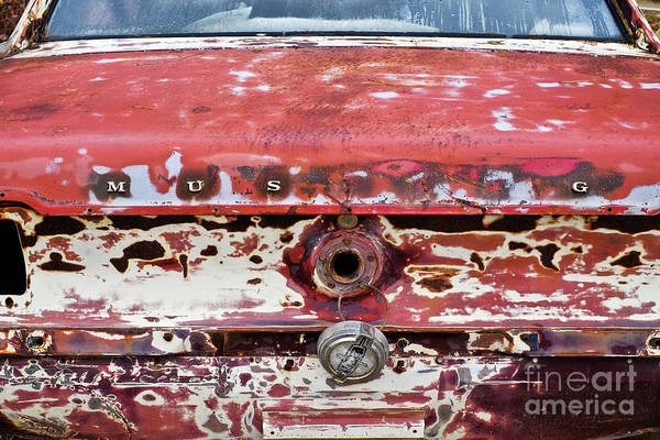 Photograph - Rusted 10 by Patrick M Lynch