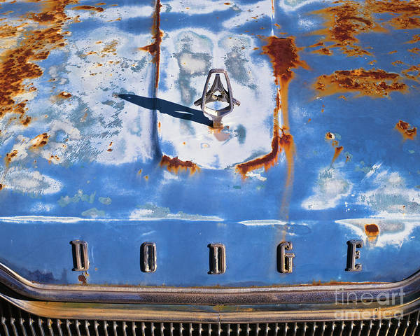Photograph - Rusted 24 by Patrick M Lynch