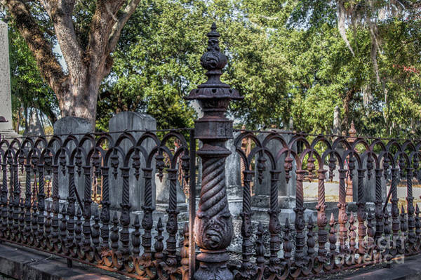Photograph - Rusted Ornate Iron Gate by Dale Powell