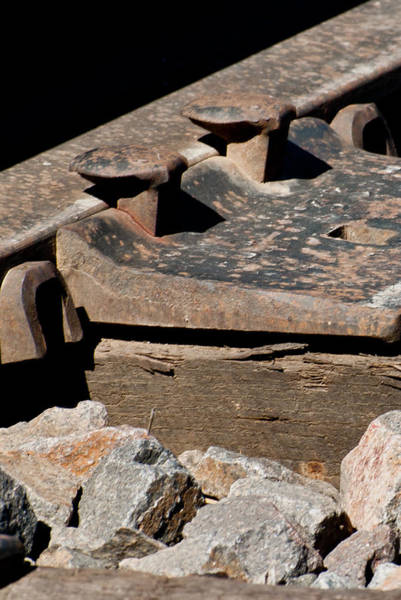 Photograph - Rusted Rail by Colleen Coccia
