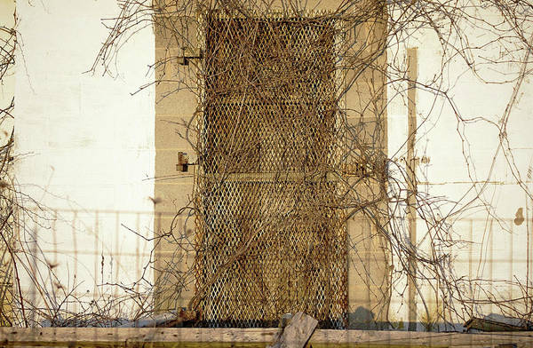 Photograph - Rusted With Abandon by Susan Maxwell Schmidt