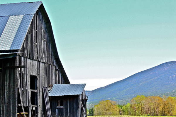 Photograph - Rustic Barn by Diana Hatcher