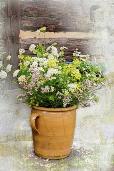 Wall Art - Photograph - Rustic Charm by Eva Lechner