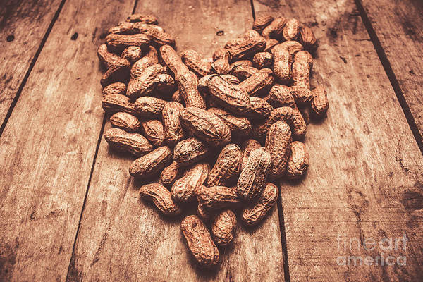 Shells Photograph - Rustic Country Peanut Heart. Natural Foods by Jorgo Photography - Wall Art Gallery