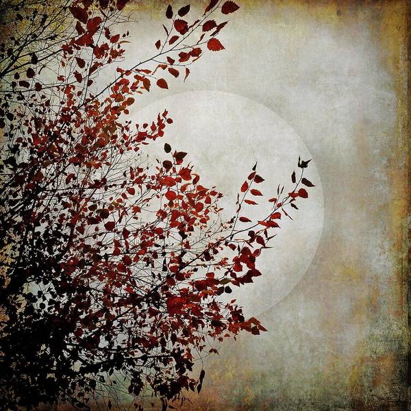 Mixed Media - Rustic Moon by Patricia Strand